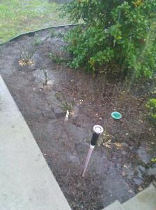 Oh the rain!