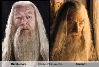 Nagu kaks tilka vett Dumbledore-totally-looks-like-gandalf