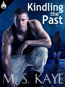 Kindling the Past by M. S. Kaye